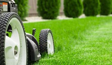 a closeup of a lawnmower cutting a lawnb
