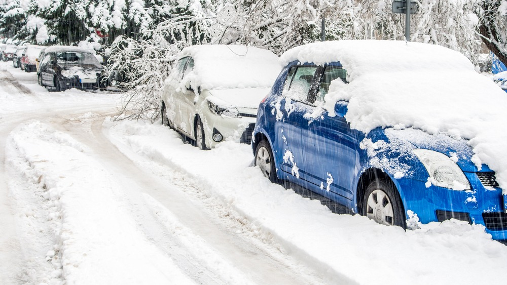 cars during snowstorm in ottawa canada