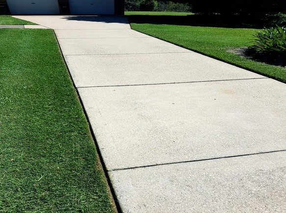 Freshly trimmed grass that has been edged to showcase the driveway