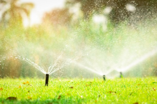 water sprinklers spraying water over a green lawn