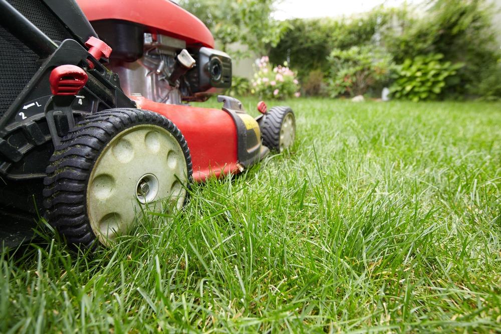 lawn mower in backyard in Ottawa