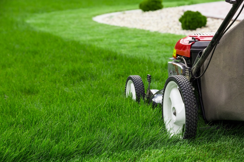 Mowing RTF lawn after installation