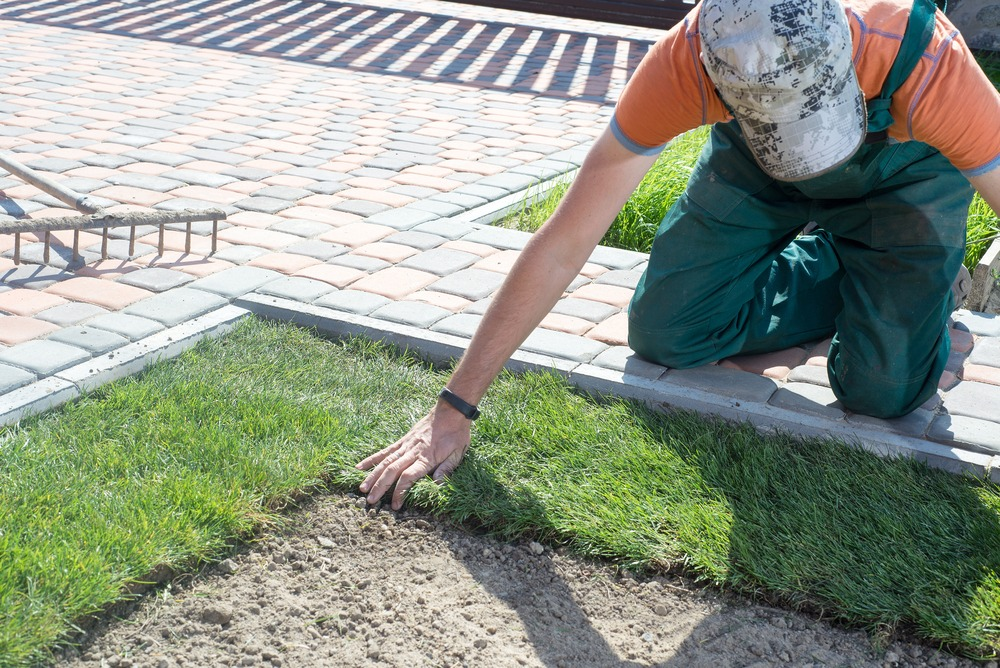 Person installing RTF grass on lawn in Ottawa