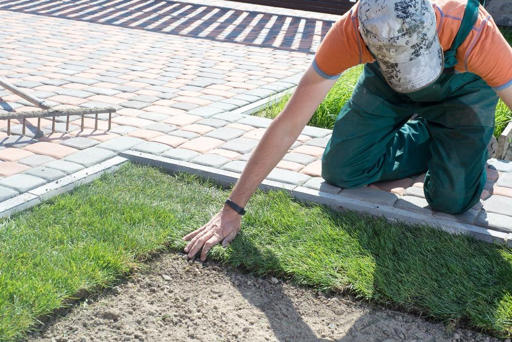 Person installing RTF grass on lawn in Ottawa