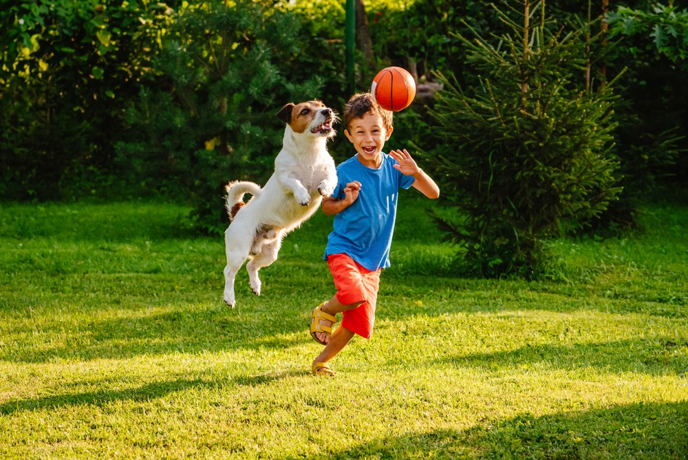 kid and pet playing on lawn