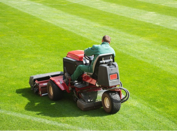 a man on a tractor striping a lawn