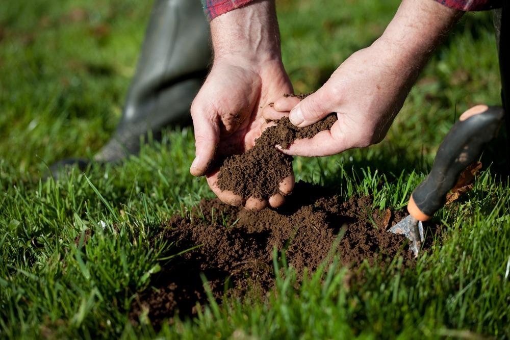testing soil for nutrients