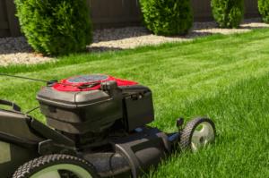 lawn mower on fresh cut grass